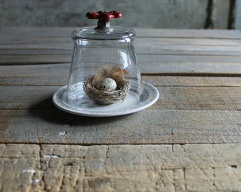 Glass Cloche with Vintage Red Faucet Knob