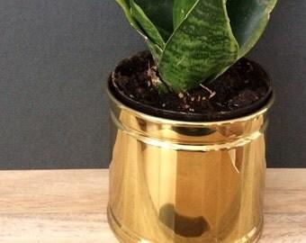 small brass planter