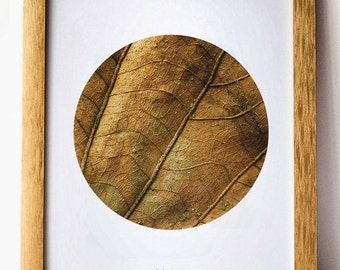 Brown leaf art, Rustic print, 11x14 poster, Rustic wall decor, Rustic home decor, Wall Photography, Brown decor, Fall decor Instant download