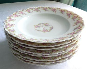 "SALE Elite Bawo Dotter Limoges France Eight Rimmed Plates or Shallow Bowls 9-1/4"" Bridal Wreath Pattern - Limoges Bridal Wreath Set Plates"