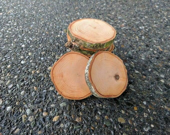 Wood Slices - Craft Wood Slices - Alder Wood Log Slices- Set of 10