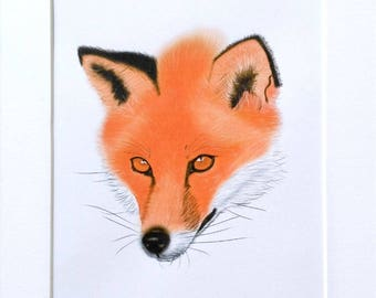 Fox Digital Art Print