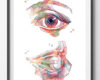 Eye anatomy watercolor print eye poster ophtalmology art print anatomy art the human eye medical art wall decor gift [61]