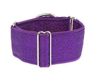 Martingale collar, greyhound collar, 2 inch, dog collar, purple martingale dog collar