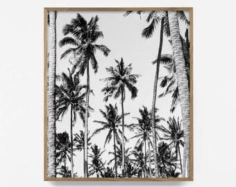 palm tree, black and white palm, tropical print, bw tropical print, bw palm tree, tropical art, printable palm, beach print, california art