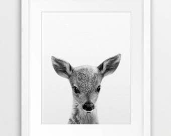 Baby Deer Print, Woodlands Animal, Nursery Wall Art, Black White Animal Print, Baby Deer Photo, Cute Animal, Kids Room Decor, Printable Art