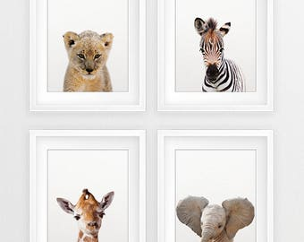 Safari Nursery Decor, Baby Animals Set 4, Lion Zebra Elephant Giraffe, Nursery Prints, Nursery Art, Safari Animals, Modern Nursery Printable