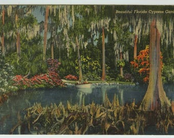Florida Cypress Gardens Old Monarchs Linen Postcard