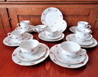 Fine Bone China 24 piece Tea Set, Bavarian Tea Set, Mitterteich Bavaria Coffee / Tea Set, German China, Rose Pattern, 30s