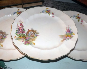 Quite vintage (c.1930s) JB1263 Johnson Brothers Old Chelsea luncheon plate. English country cottage and garden, gold edge.