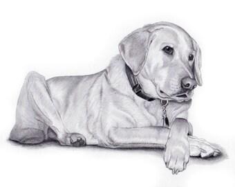 CUSTOM PET PORTRAIT from your favorite photo, Original Art, Dog Portrait, Custom Pet drawing, Labrador, Gift for her. Original Fine Art