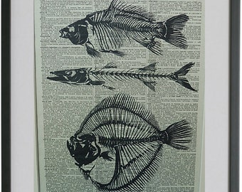 Fish Skeleton Print No.315, skeleton fish poster, nautical wall decor, fish decor, fish art, vintage wall art, dictionary art