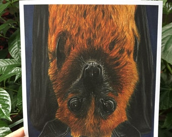 Flying Fox Bat - Art Print of Original Drawing