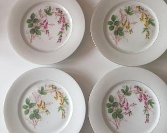 4 x Antique Edwardian Art Nouveau hand painted porcelain floral flower design plates plate