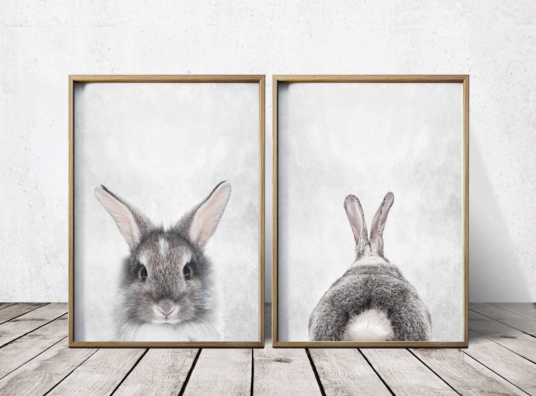 Jual Wall Art Print : Nursery wall art decor gray rabbit print bunny