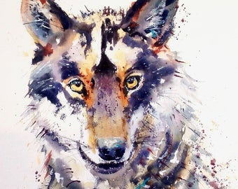 """Wolf """"Iberian Eyes"""" - Limited Edition Mounted Giclee (65 x 50cm) Watercolour print from an original watercolour by Karen Thomas"""