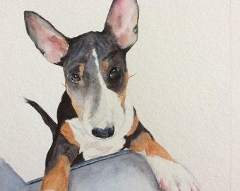 Custom pet portrait of Bull Terrier