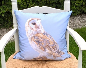 Barn Owl on Post Cushion