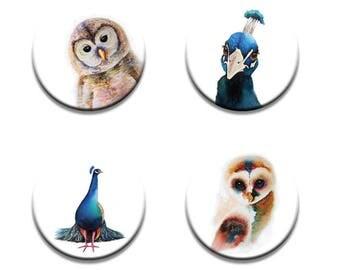 A pack of 4 Maria moss Artist pop art Owls & Peacocks design Pattern weights fabric weights