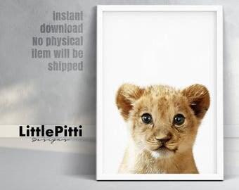Lion cub print, baby wall art, safari animal prints, baby lion print, minimalist kids room decor, african digital download, lion cub photo