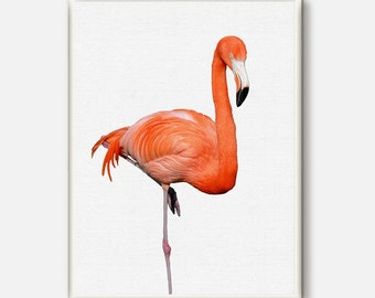 Flamingo Print Tropical Wall Art Flamingo Art Tropical Decor Large Print Art Tropical Print Poster Large Prints Wall Art Print Animal Art