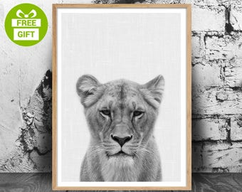 Animal Print, Lioness Photography, Safari Nursery Animal Print, Lion Digital Print, African Animal Wall Art, Instant Digital Download