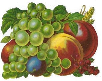 Large Victorian Fruit Die Cut Scrap: Grapes, Plums, Peaches, Pears & Goseberries