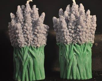 Lavender bundle soy candle