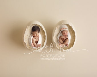 Little Pose ~ Two Eggs Twins Newborn Digital Background High Res jpg file