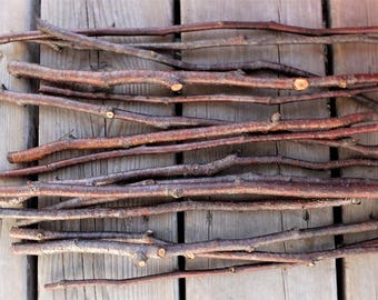 Alder tree sticks, craft sticks and branches, twig craft supplies, natural craft supplies, fairy hobbit house, florist's supply