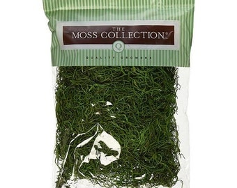 Spanish Moss The Moss Collection Code: NM-QG1542