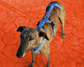 Arnés para galgos/ arnés para perros/ arnés de seguridad/ arnés anti escape/ anti-escape/ accesorios para perros/ seguridad para galgos.