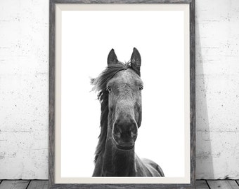 Horse Print, Horse Wall Art, Black and White, Minimalist Prints, Horse Photo, Minimalist Poster, Printable Art, Digital Printable Download