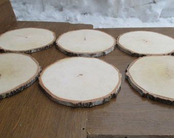 """Large Birch Wood Slices 9 -10 inch, 9""""-10""""wood slices, large wood slabs, wood platter, Rustic Wedding Decor, Cake Stand, Wedding Centerpiece"""