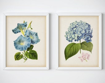 Set of 2 blue flowers, Flower print set, Hydrangea print, Morning glory print, Flower art, Instant download botanical prints, 8x10, 11x14