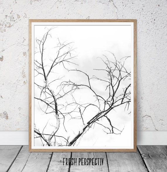 Black and white poster, black and white photography, black and white wall art, modern minimalist print, tree branches wall art, prints
