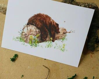 Sleeping Bear Watercolor Artwork Print