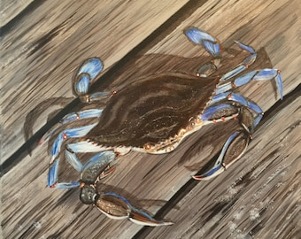 Georgia Blue Crab