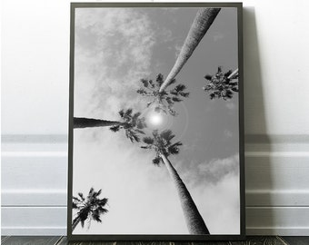 Palm Trees, Sun Flare, Palm Tree Wall Art, Palm Tree Digital Print, Black and White, Grey Palm Trees, Grey Digital Art Prints, Minimalist