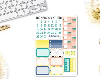 Sunny Days Half Boxes & Date Covers