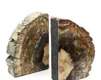 Petrified Wood Fossil Bookends - 5-7 Inches - 2 Piece Set