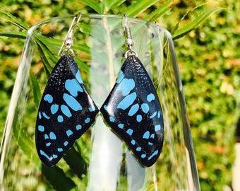 Real Butterfly Wing Earrings - Black & Blue/Orange- Thailand