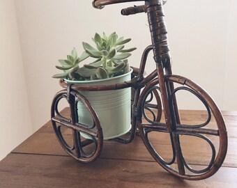 Vintage Bicycle Planter, Vintage Rattan Planter, Boho Planter, Rattan Bicycle  Planter