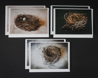 Bird Nests - Boxed Photo Greeting Cards