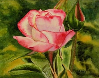 Pink rose painting flower original watercolor wife gift mom gift 9x12
