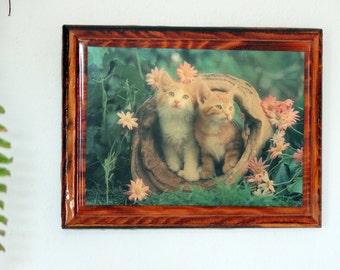 Nature Kittens