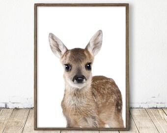 Baby Deer Print, Dear Print, Dear Art, Fawn Wall Art, Baby Animal Nursery Art, Fawn Print, Forest Print, Baby Forest Animal, Nature print