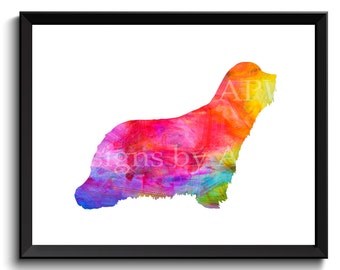 Bearded Collie art, highland collie, mountain collie, argle bargle, beardie dog art, rainbow dog print, digital art - SKU1018