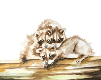 Raccoon Watercolor Etsy