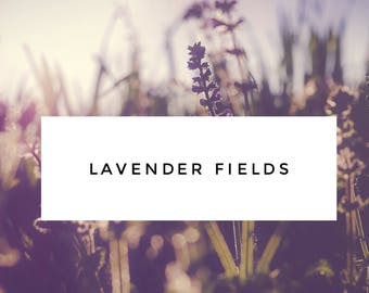 Lavender Fields Laundry Detergent